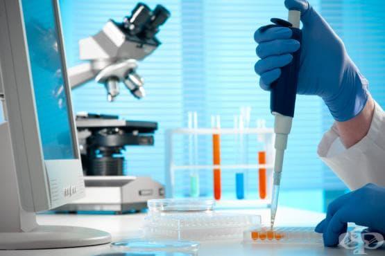 Полимеразна верижна реакция (PCR) - изображение