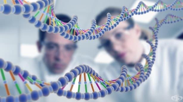 Генетични изследвания - изображение