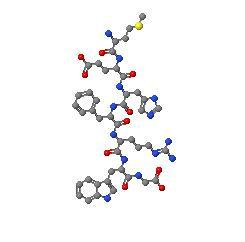 Адренокортикотропен хормон (АКТХ) - изображение