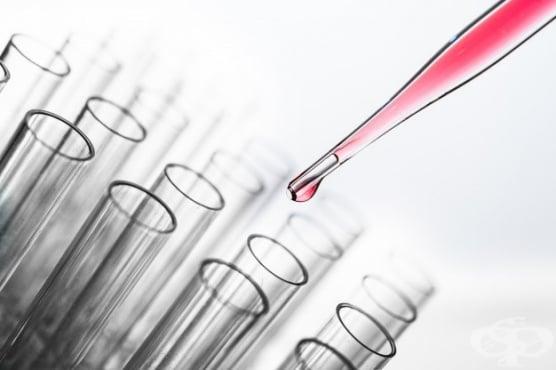 Изследване на прогестерон - изображение
