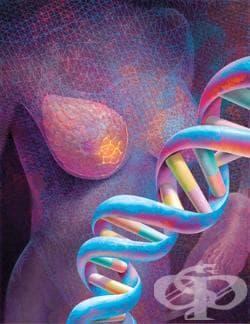 Генетични изследвания при рак на гърдата и яйчниците - изображение