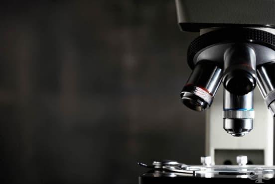 Имунохистохимия - изображение