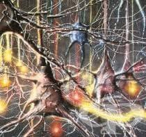 Биопсия на нерв - изображение