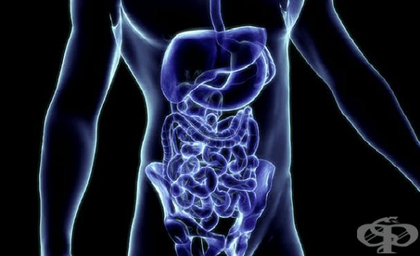 Рентгеново изследване (рентгенография) на корем - изображение