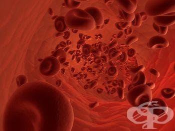 Тест за хемохроматоза - изображение