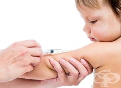 БЦЖ ваксина - изображение