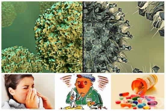 Как да различим грип от настинка и да се лекуваме правилно? - изображение