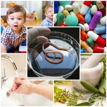 Лечение на глисти при деца и възрастни - изображение