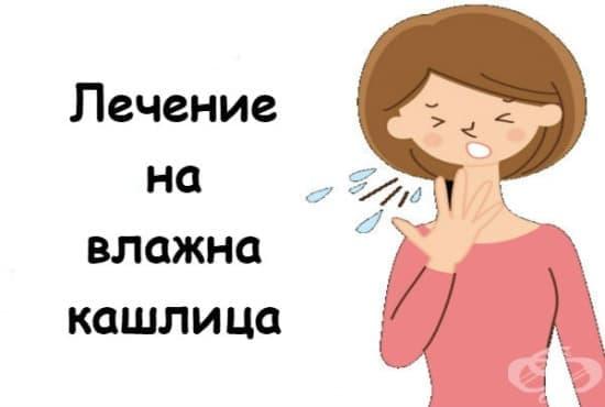 Лечение на влажна кашлица - изображение