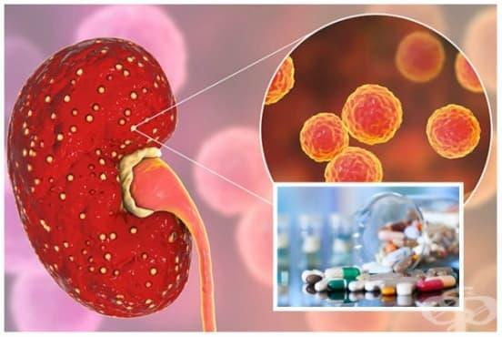 Лечение при пиелонефрит - изображение