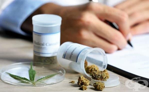 Медицински канабис: ползи, лечебни свойства, рискове - изображение