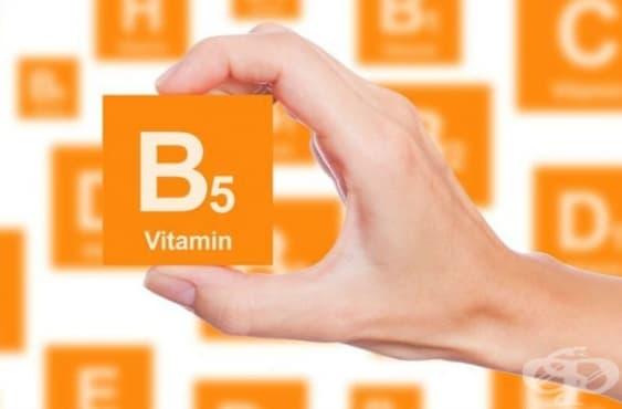Полезни ефекти на витамин В5 (пантотенова киселина) - изображение
