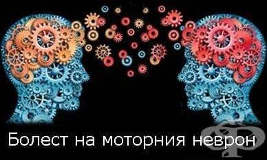 Терапия при болест на двигателния неврон (амиотрофична латерална склероза) - изображение