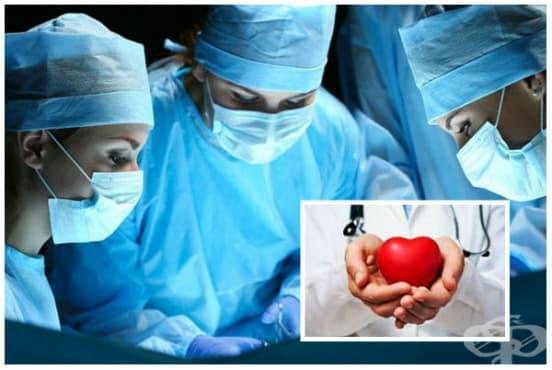 Трансплантация на сърце - изображение