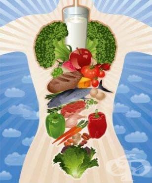 Здравословен хранителен режим - изображение