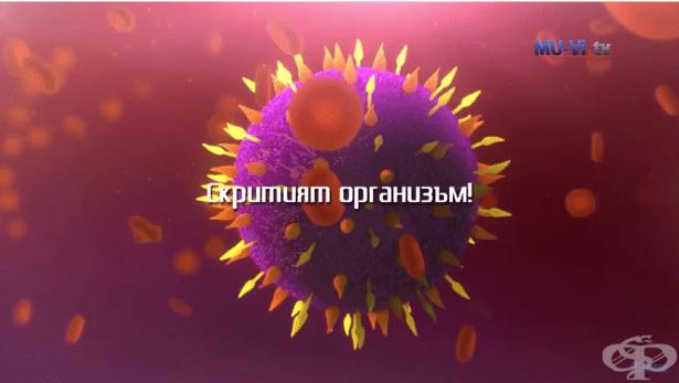 Доц. д-р Миглена Георгиева - Микробиомът, невидимият организъм - изображение